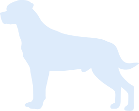 dog-silhouette