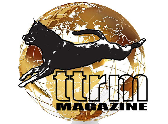 TTRM gold globe website