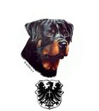 allgemeiner deutscher Rottweilerverband